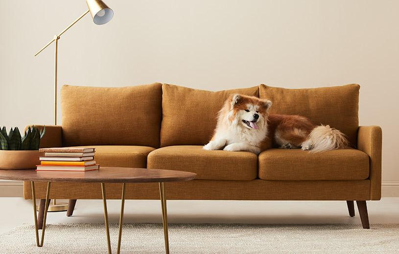 Shop the Original Custom Sofa Collection